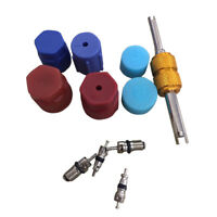 R134a Auto Car Air Conditioning Valve Core A/C System Caps Kits W/ Remover Tool
