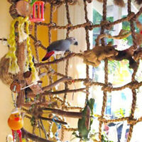 US Parrot Bird Toy Climbing Net Jungle Fever Rope Small Animal Swing Ladder Toy