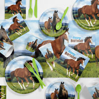 Wild Horse Birthday Party Supplies Kit