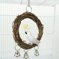 Pet bird parrot swing cage toy chew bites parakeet cockatiel cockatoo conur RSA