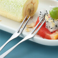 12 pcs Fruit Forks Stainless Steel Reusable Salad Picks Party Supplies for Home