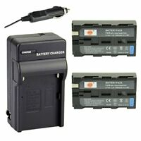DSTE 2x NP-F550 Battery + DC01 Travel and Car Charger Adapter for Sony CCD-RV100