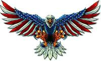 AMERICAN FLAG BALD EAGLE USA DECAL STICKER TRUCK VEHICLE WINDOW 6yr ae1