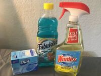 Small cleaning supply bundle