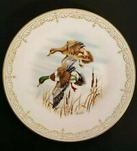 Water bird collectible plate