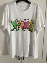 Kaws x uniqlo t shirt large