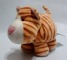 Orange striped tiger kitty cat