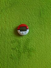 Nintendo ds pokemon pokewalker für