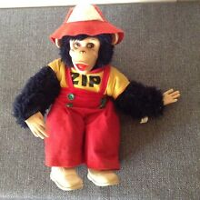 Rushton zip zippy the chimp monkey