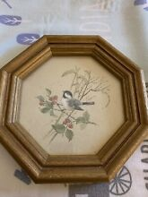 Beautiful framed bird picture in a