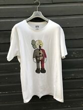 Kaws x uniqlo flayed companion t