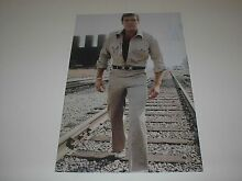 The steve austin poster pin up lee