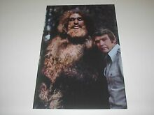 The bigfoot poster pin up lee