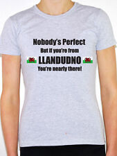 NOBODY'S PERFECT BUT IF YOU'RE FROM LLANDUDNO - Wales Themed Women's T-Shirt