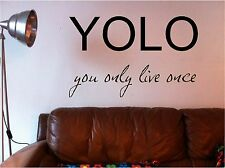 Yolo You Only Live Once ADESIVI artistici da parete DECALCOMANIA