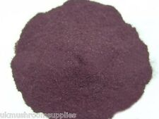 ACAI BERRY pure fruit extract powder (10:1) - pharmaceutical grade (Açaí palm)