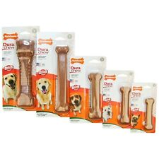 Nylabone DuraChew Bacon Flavored Free Shipping  (All Sizes)