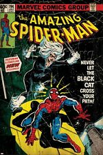 Marvel Comics Retro Style Guide: Spider-Man, Black Cat Poster