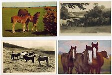 HORSE POSTCARDS ASSORTED HORSES AND PONIES PONY EQUINE POSTCARD