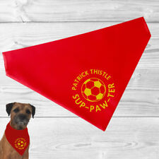 Patrick Thistle Pet Bandana | football sup-paw-ter cats and dogs | FC | fun gift
