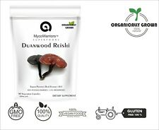 Duanwood Reishi Mushroom Dual Extract 10:1 | 40% Polysaccharides | LOG-GROWN