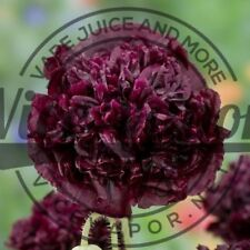 Black Peony Poppy Seeds and many more types Papaver Somniferum Small-large Packs