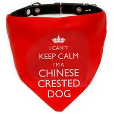 I'm A Chinese Crested Dog Bandana   Red or Blue   Gift for dogs & puppies