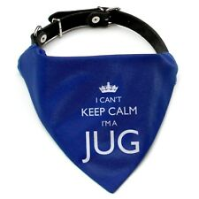 I'm A Jug Dog Bandana Neckerchief | Red or Blue | Gift for dogs & puppies