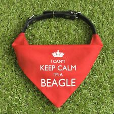I'm A Beagle Bandana   Cute collar neckerchief   Gift for dogs puppies & owners