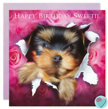 PERSONALISED YORKSHIRE TERRIER YORKIE /& ROSE BIRTHDAY ANY OCCASION CARD A5 size