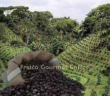 Columbian Medium Roast Coffee Beans 100% Arabica Bean/Ground Coffee World Coffee