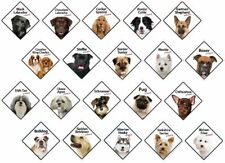 On Board Dog Plastic Signs