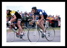 Cycling Legend Eddie Merckx 1977 Cycling Photo Memorabilia (711)