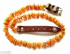 Genuine Baltic amber dog necklace, anti-thick anti flea dog collar, pet jewelry