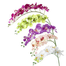Real Touch Orchid Flowers Phalaenopsis Wedding Party Floral Arrangement Decor