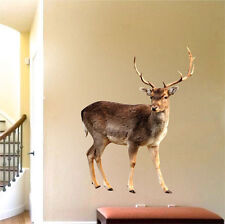 Deer Buck Wall Decal Mural Antlers Hunting Wild Animals Removable Wall Art, a14