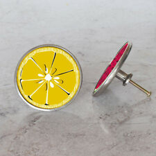 Citrus and Summer Fruit Slice Cupboard Drawer Handle Pulls Cabinet Door Knobs