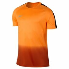 Nike Men's Dry CR7 Squad Football Top - Tart