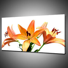 BEAUTIFUL LILY FLOWERS CANVAS PICTURE PRINT WALL HANGING ART HOME DECOR FREE P&P