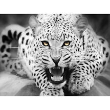 Fierce Roaring Leopard Unframed Hand Painted By Numbers Oil Painting Home Decor