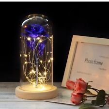 Gold Rose Glass Dome Decor Beauty And The Beast LED Lights Perfect Gift Ladies