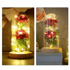 Enchanted Rose Lamp, Beauty and The Beast Rose in Glass Dome, 20 Led Light 2pcs