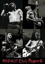 New Red Hot Chili Peppers Chili Peppers Live RHCP Poster