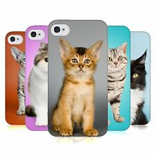 HEAD CASE POPULAR CAT BREEDS TPU GEL BACK CASE COVER FOR APPLE iPHONE 4S