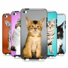 HEAD CASE DESIGNS POPULAR CAT BREEDS CASE FOR APPLE iPOD TOUCH 4G 4TH GEN