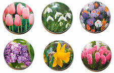 6 Mini 'Spring Flowers' Gift Magnets -  Gift / Kitchen - 25mm - MADE IN UK