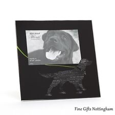 Cats & Dogs Photo Frames - Pet Collection - Wild About Words by Dominique Vari