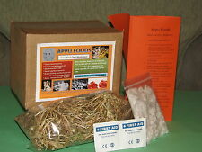 Mushroom Growing Kit - King Oyster OR Button