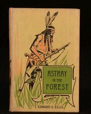 1898 Astray in the Forest Edward Ellis Illustrated