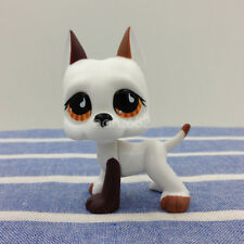 Littlest Pet Shop #750 RARE Puppy Great Dane Dog White Chocolate Brown Eyes LPS